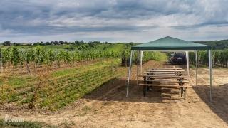 Ďalší z krásnych výhľadov na strekovské vinohrady