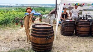 Výzdoba popri vinohradníckej ceste na festivale